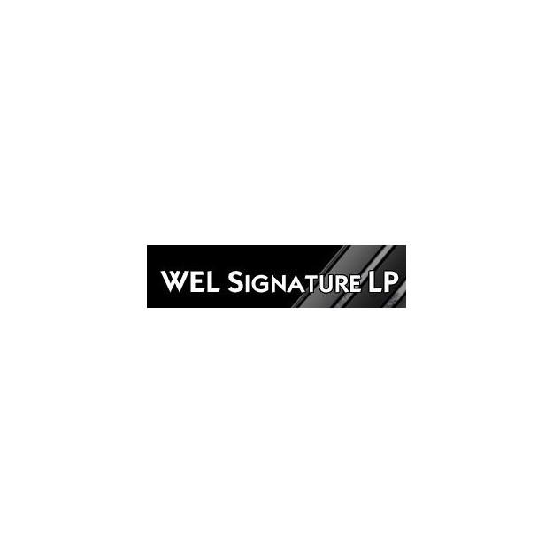 Câble de bras Audioquest Wel Signature LP