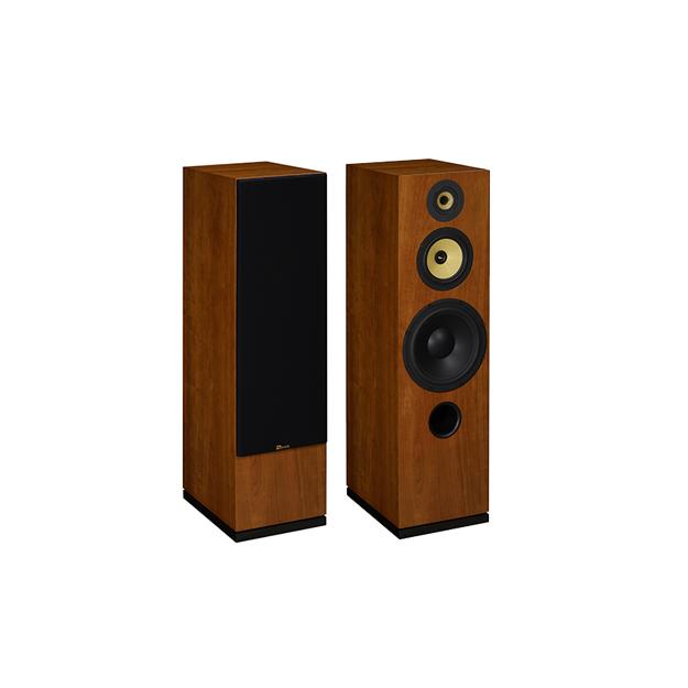 Enceintes colonne DAVIS Acoustics CESAR HD