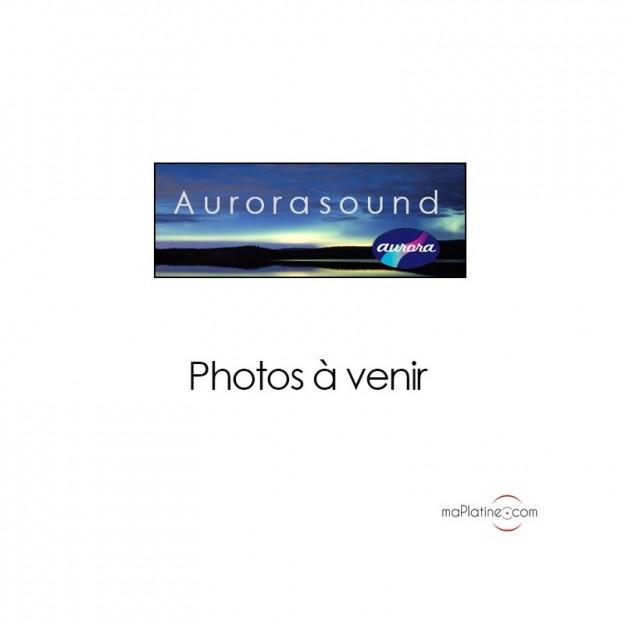 Préamplificateur phono Aurorasound Vida Mono VI-8
