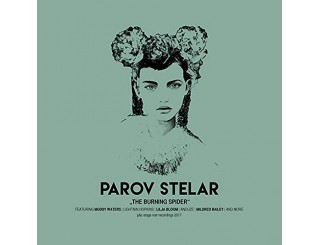 Disque vinyle Parov Stelar - The Burning Spider