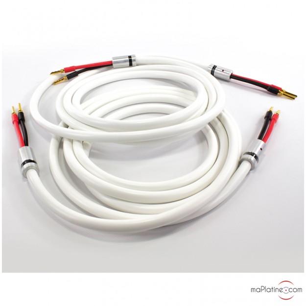 Câbles haut-parleurs Viard Audio Silver HD12 HP