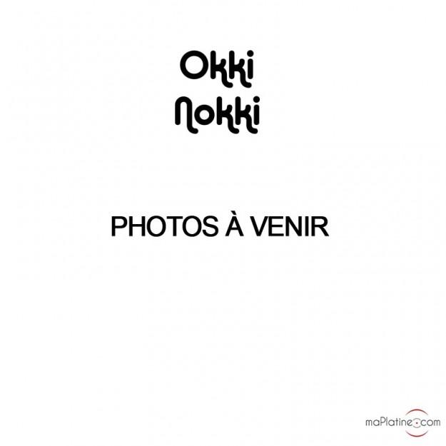 Machine à laver les disques vinyles Okki Nokki GO!