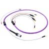 Câble Phono Nordost FREY 2 - 1,25 m