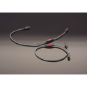 Câble de modulation XLR Transparent Musiclink Balanced