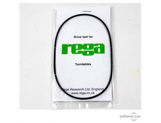 Standard REGA Belt