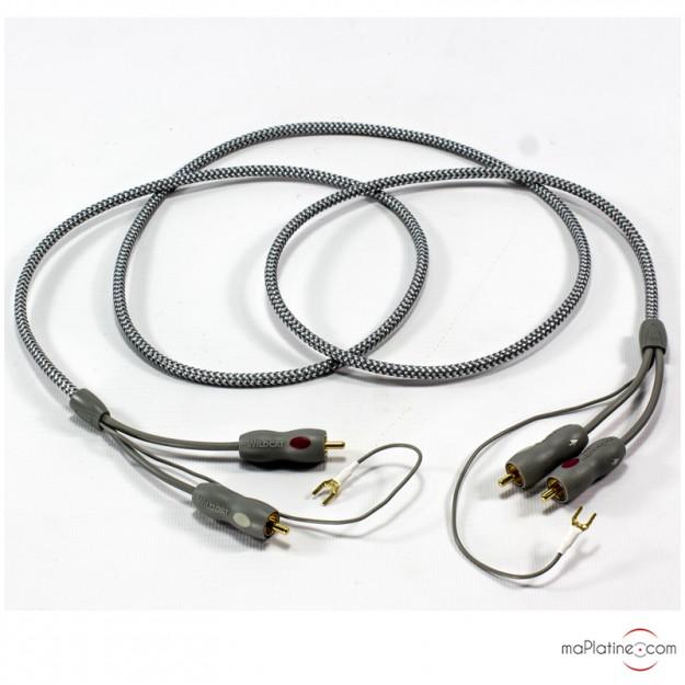 Câble PHONO Audioquest Wildcat