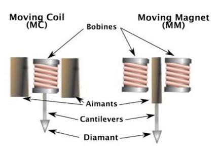 Les cellules - Fabriquer une platine vinyle ...