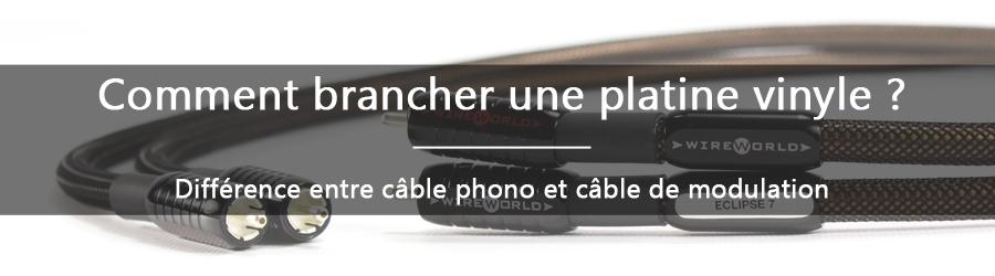 Quelle est la différence entre un câble phono et un câble de modulation ?