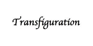 Logo Transfiguration